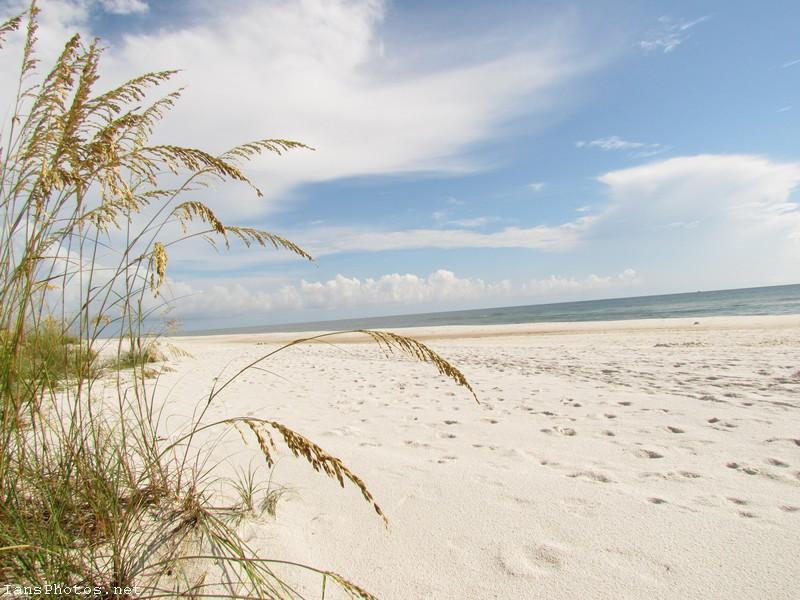 Cape San Blas Beach, Saint Joseph peninsula state park Florida